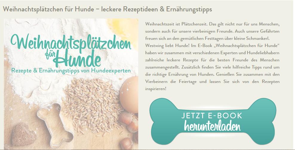 Ebook Weihnachtsplätzchen für Hunde von westwing.de