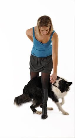 Dogdance-Training Foto: © CallallooAlexis - Fotolia.com