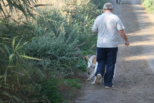 Dog Walk von San Animal Santuario Aguilas