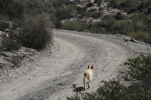 Wandern in Aguilas
