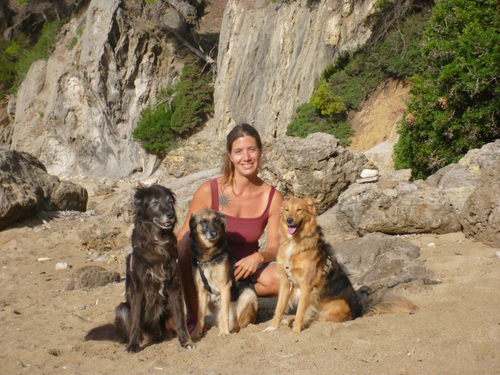 Für wen eignet sich Online-Hundetraining?
