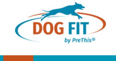 DOG FIT Gutschein