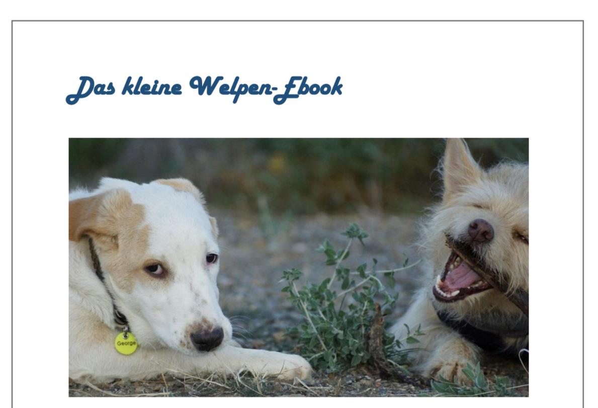 Tierische Krabbelgruppe – Gratis Welpen-Ebook für neue Mitglieder