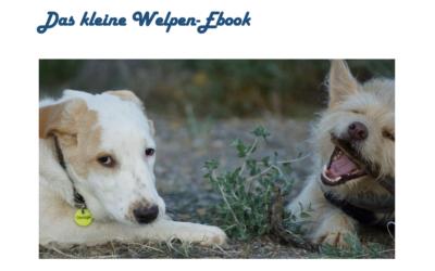 Gratis: Das kleine Welpen-Ebook